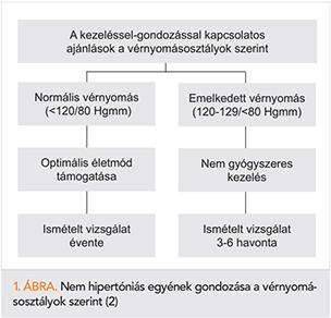 a hipertónia kockázatának mértéke)