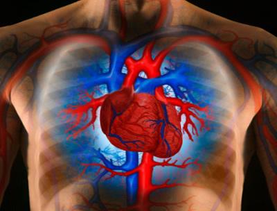 Emelkedett hemoglobin: a nők és férfiak oka - Magas vérnyomás