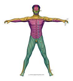 hipertónia okozta fogyatékosság magas vérnyomás 1 stádium 3 fokozatú kockázat 4