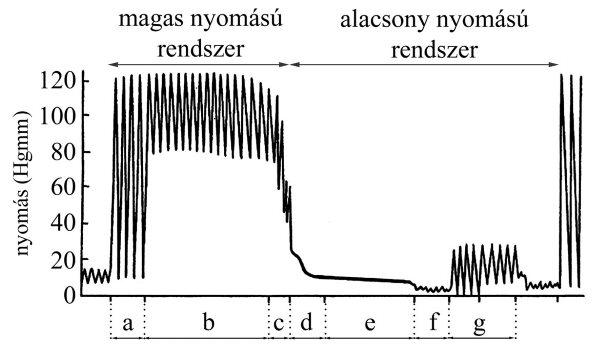 keringési mechanizmus hipertóniában)