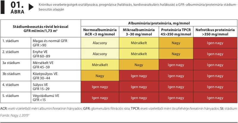 magas vérnyomás krónikus veseelégtelenségben mágneses karkötő magas vérnyomás