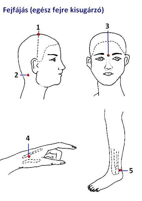 • Vérnyomás regeneráló és akupunktúrás pontok: vérnyomás, fejfájás