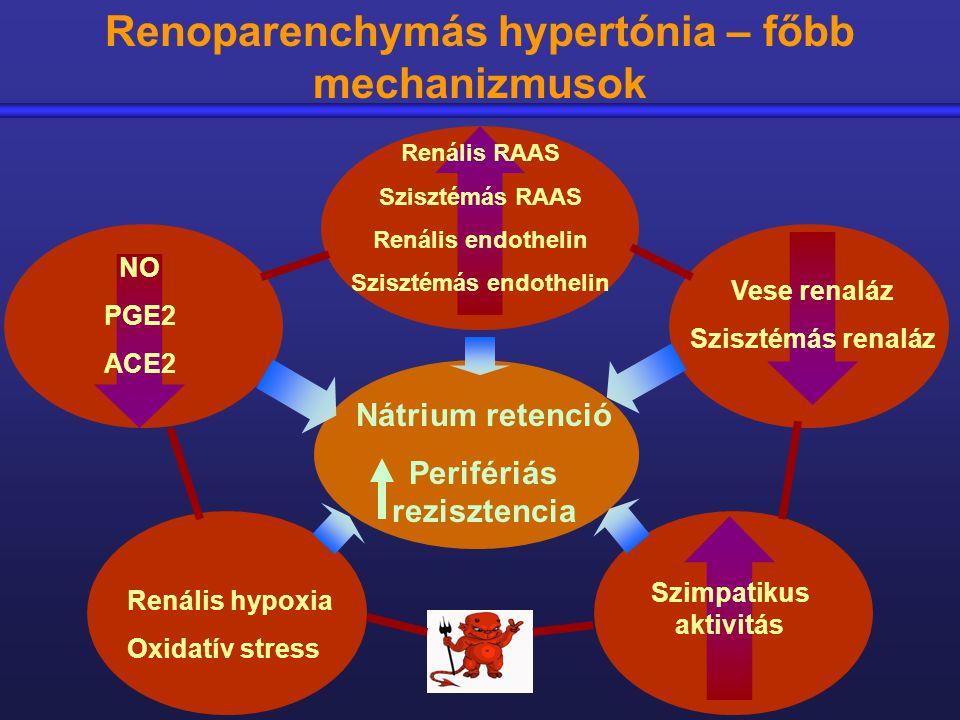 perifériás hipertónia)