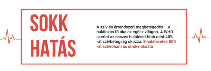 mi provokálhatja a magas vérnyomás támadását)
