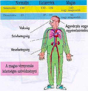 magas vérnyomás szituációs feladatok