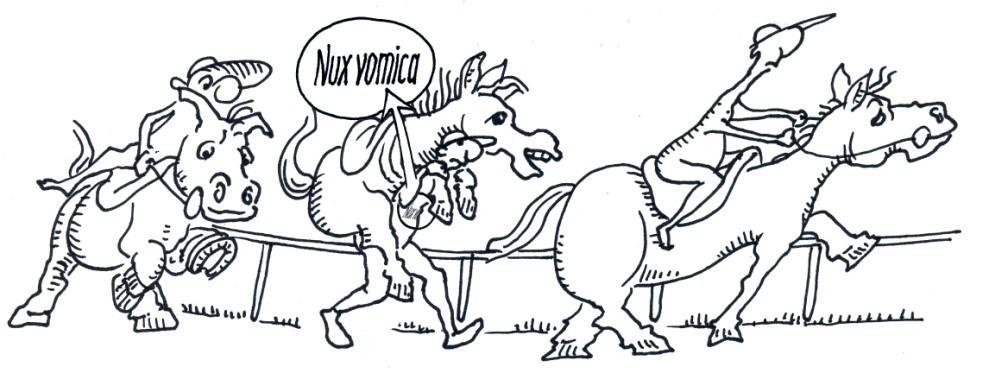 Nux vomica magas vérnyomás esetén)