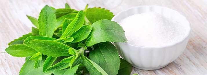 hogyan kell használni a stevia-t magas vérnyomás esetén