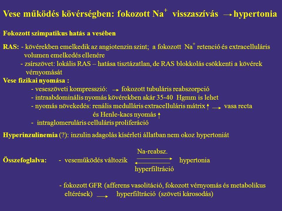 vese nyomás hipertónia)