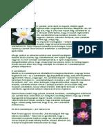 hipertónia adrenerg blokkolói a vesekárosodás tünetei magas vérnyomás esetén
