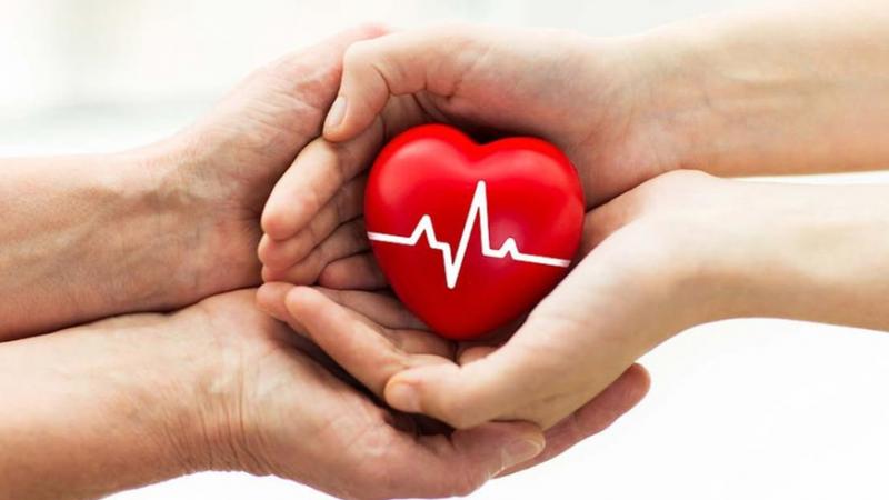 véradó magas vérnyomás esetén)