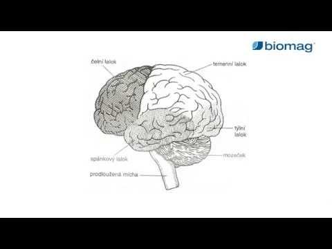 ideg hipertónia kezelése 1 fokos magas vérnyomású krízisek