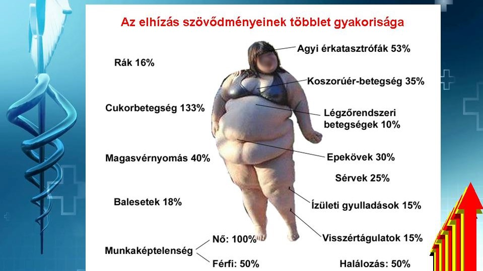 diéta elhízás hipertónia)