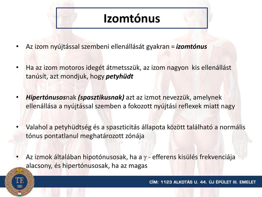 izomtónus magas vérnyomás)