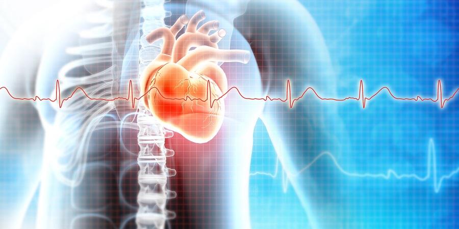 Jobb kamrai szívelégtelenség - KardioKözpont