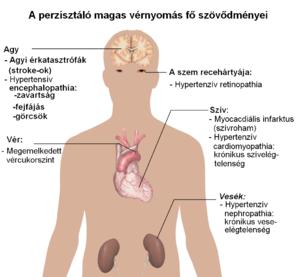 krónikus folyamata a magas vérnyomás okai
