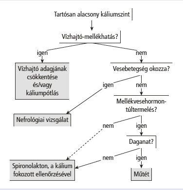 magas vérnyomás és hiperkalémia