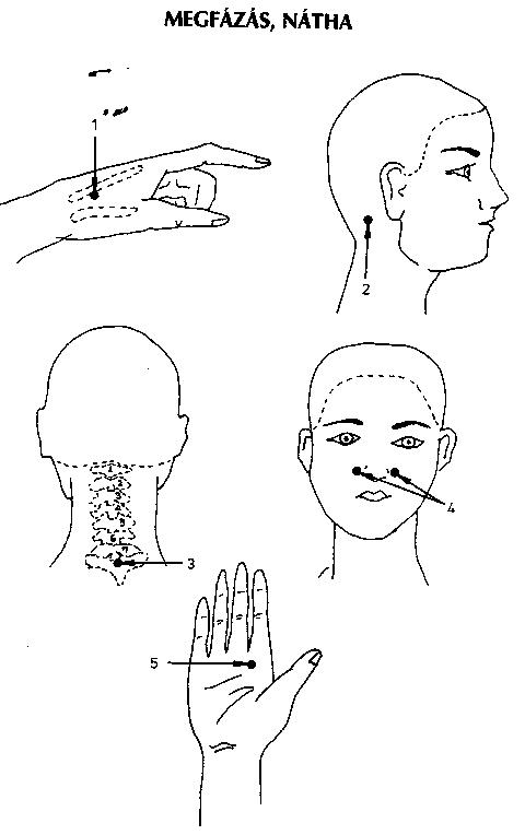 pontok az emberi testen a magas vérnyomástól hogy hipertóniával és dohányzással fut-e