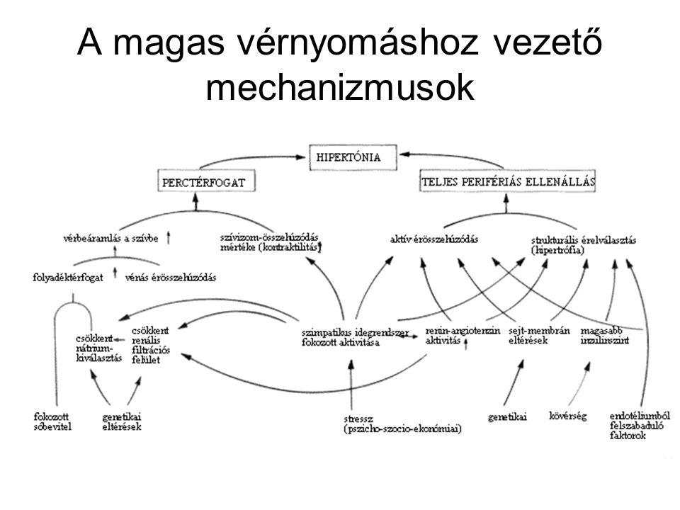 hogyan határozzák meg a magas vérnyomás szakaszait)