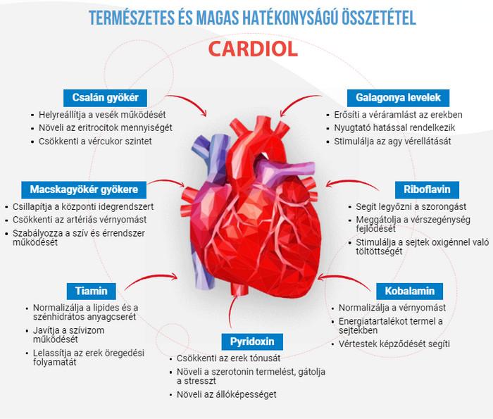 gyógyszerek a magas vérnyomásban szenvedő erek megerősítésére)