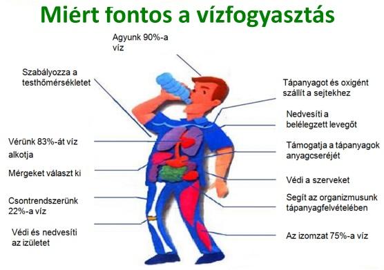 mennyi vizet kell inni naponta magas vérnyomás esetén)