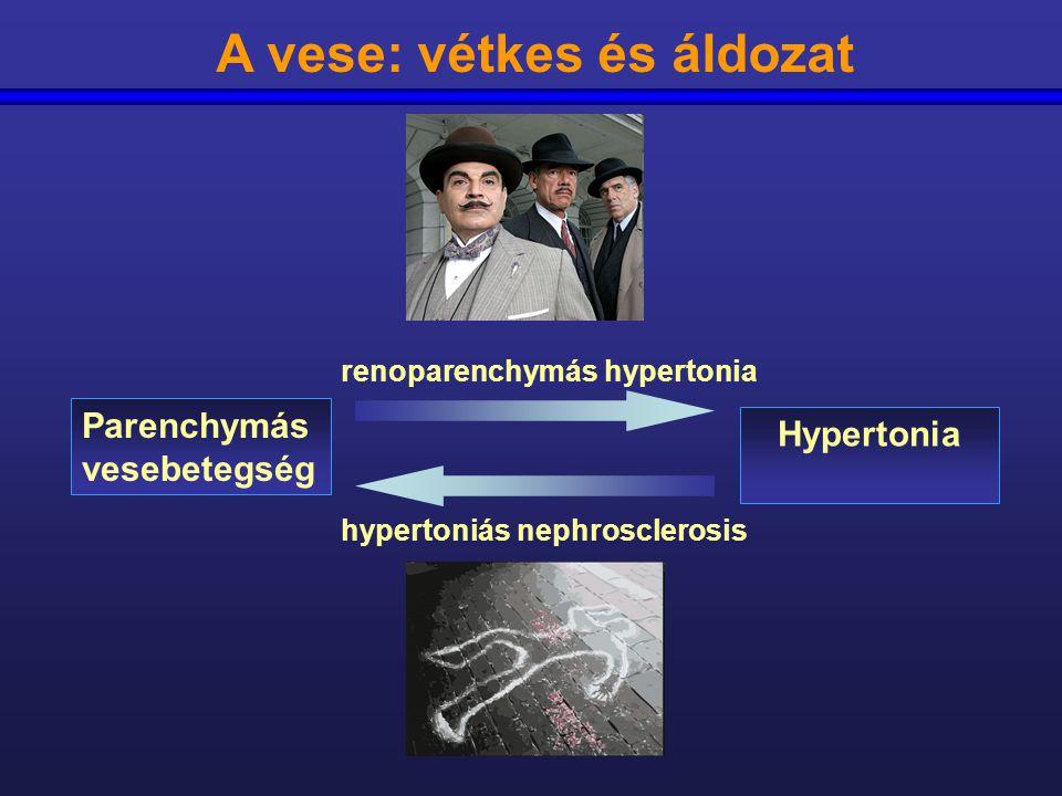 mit kell bevenni a vese hipertónia esetén)