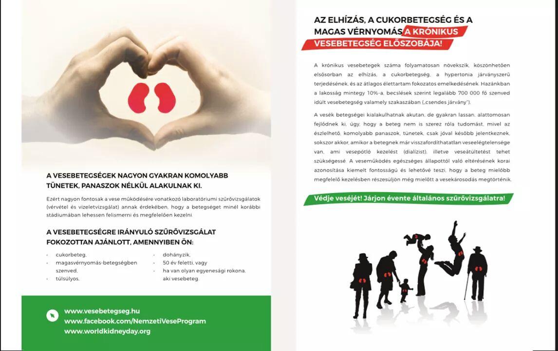 magas vérnyomás program)