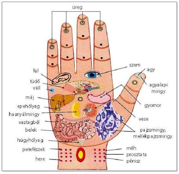 a hipertónia receptjeinek alternatív kezelése)