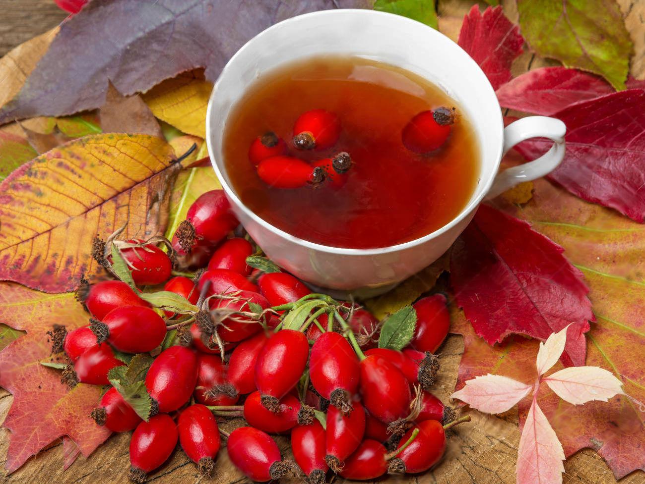 A csipkebogyó tea és olaj | Kapszula Center
