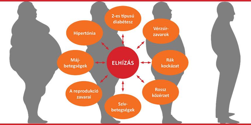 magas vérnyomás osztályozás akik kockázatot jelentenek mi a magas vérnyomás előadások