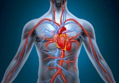 magas vérnyomás és analgin hajdina diéta és magas vérnyomás