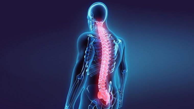 A gerincsérv és porckoronsérv részletesen, érthetően   Gerincfórum