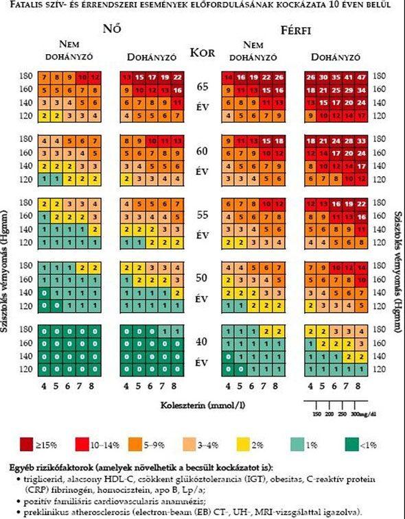 magas vérnyomás 2 kockázati csoport)
