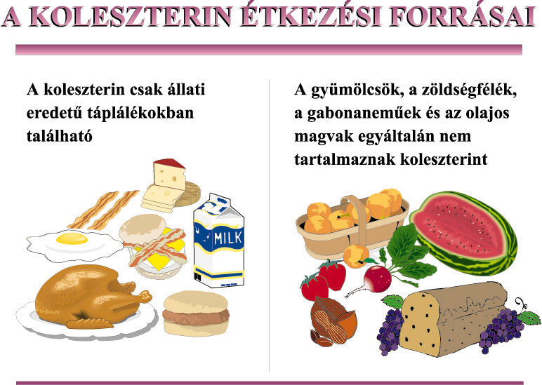 A jó, a rossz és a magas – koleszterin és vérnyomás - Vitamed