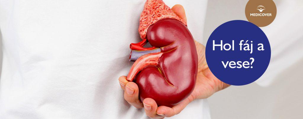 Így ismerheti fel a vesegyulladás tüneteit! - EgészségKalauz