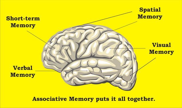 az agyi erek károsodása magas vérnyomásban)