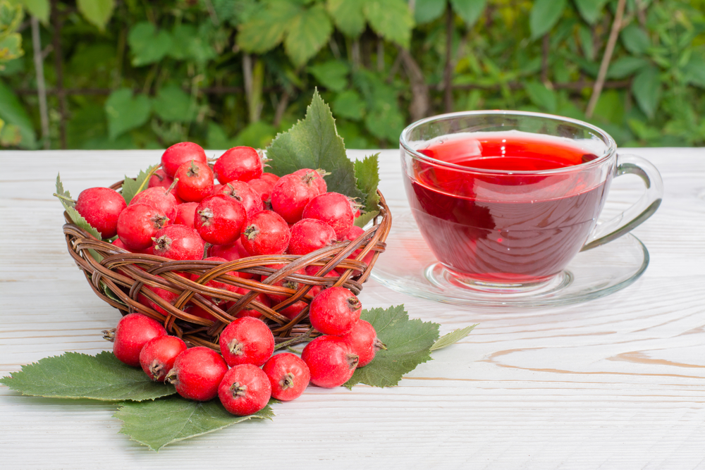 cseresznye és magas vérnyomás