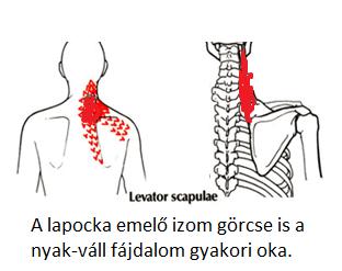 magas vérnyomás és fájdalom a fej hátsó részén)