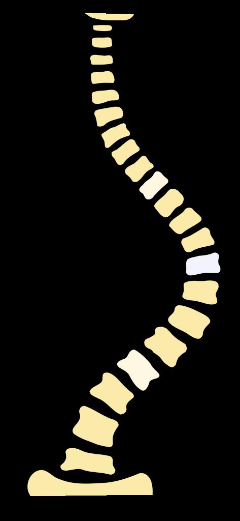 fizikoterápiás gyakorlatok magas vérnyomás esetén 1 fok magas vérnyomású pikkelysömör