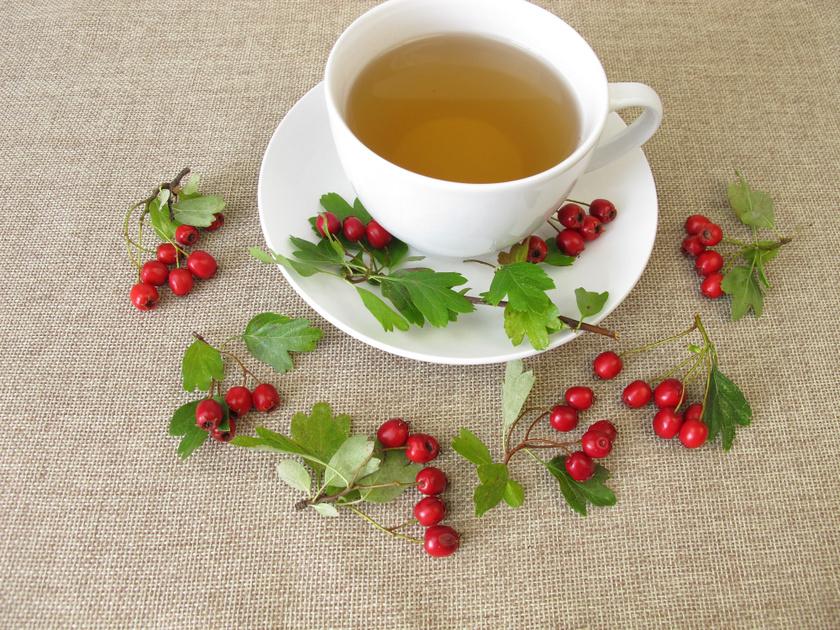 gyógynövény amelyet magas vérnyomás esetén alkalmaznak)