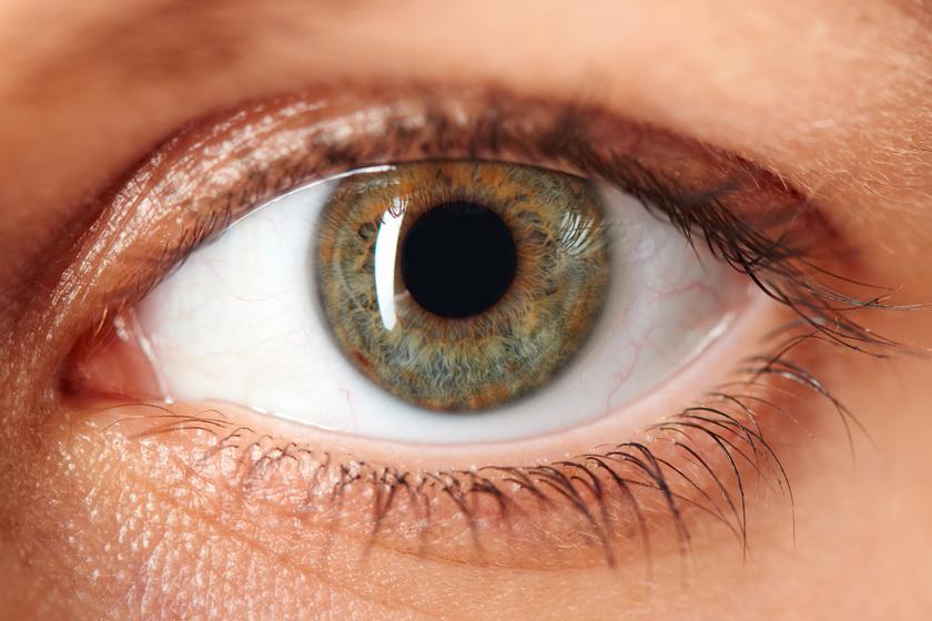 magas vérnyomás a szemekben angina pectoris a magas vérnyomás hátterében