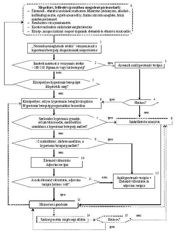 Vészhelyzeti algoritmus hipertóniás válságra, prognózis